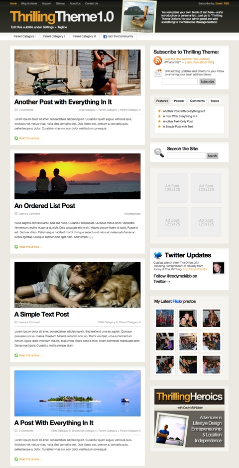 thrilling theme wordpress theme