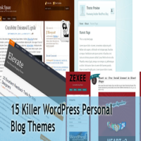 15 killer wordpress themes