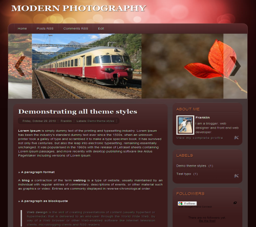 modern photography blogger template