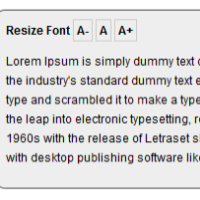 instant font resize
